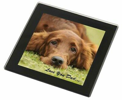 Red Setter Dpg 'Love You Dad' Black Rim Glass Coaster Animal Breed Gif, DAD-93GC