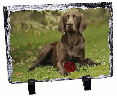 German Shorthaired Pointer with Red Rose Photo Slate Christmas Gift , AD-GSP1RSL
