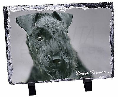 Kerry Blue Terrier 'Yours Forever' Photo Slate Christmas Gift Ornamen, AD-KB1ySL