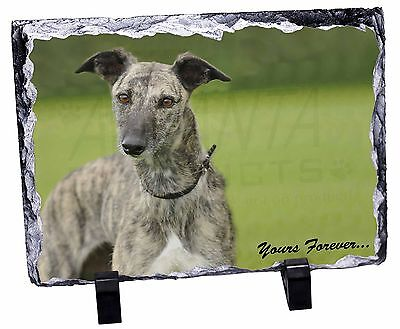 Greyhound Dog 'Yours Forever' Photo Slate Christmas Gift Ornament, AD-LU7ySL