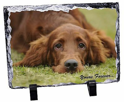 Red Setter Dog 'Yours Forever' Photo Slate Christmas Gift Ornament, AD-RS2ySL