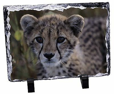 Cheetah Photo Slate Christmas Gift Ornament, AT-24SL