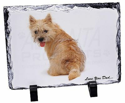 Cairn Terrier Dog 'Love You Dad' Photo Slate Christmas Gift Ornament, DAD-20SL