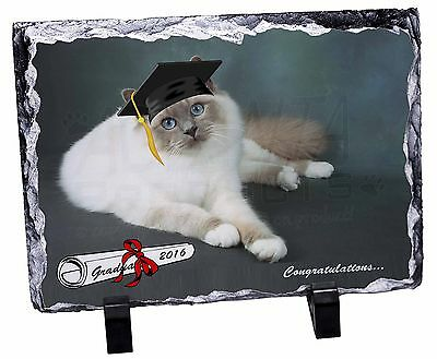 PD-85PW Birman Cat /'Purrrfect Daughter/' Glass Paperweight in Gift Box Christmas