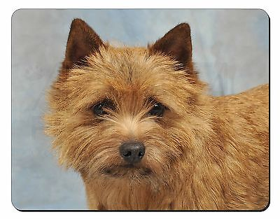 Norfolk-Norwich Terrier Dog Computer Mouse Mat Christmas Gift Idea, AD-NT2M