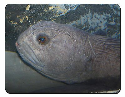 Ugly Fish Computer Mouse Mat Christmas Gift Idea, AF-26M