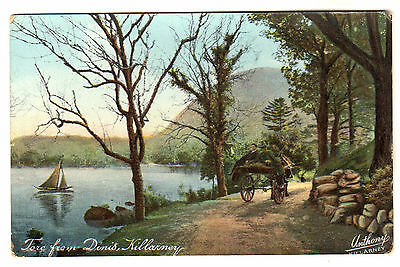 Tore From Dinis - Killarney Photo Postcard c1910
