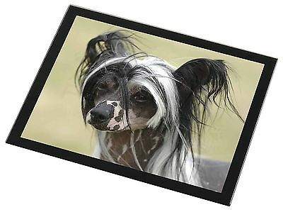 Chinese Crested Dog Black Rim Glass Placemat Animal Table Gift, AD-CHC2GP