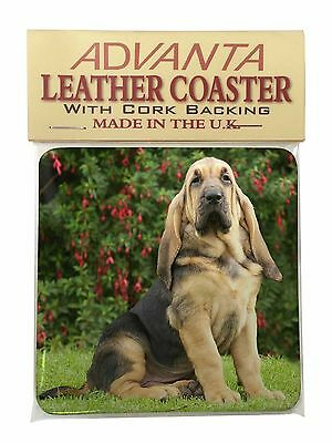 Bloodhound Dog Single Leather Photo Coaster Animal Breed Gift, AD-BL1SC
