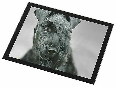 Kerry Blue Terrier Dog Black Rim Glass Placemat Animal Table Gift, AD-KB1GP
