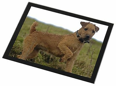 Lakeland Terrier Dog Black Rim Glass Placemat Animal Table Gift, AD-LT1GP