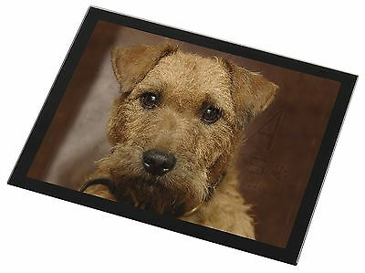Lakeland Terrier Dog Black Rim Glass Placemat Animal Table Gift, AD-LT2GP
