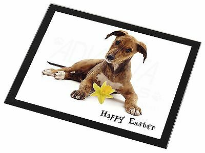 'Happy Easter' Lurcher Black Rim Glass Placemat Animal Table Gift, AD-LU2DA1GP
