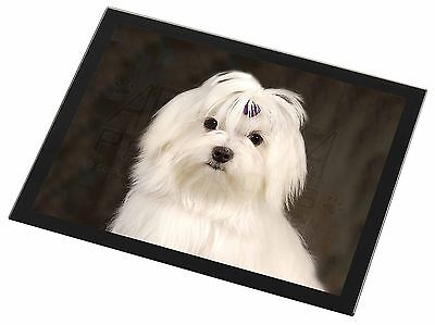 Maltese Dog Black Rim Glass Placemat Animal Table Gift, AD-M1GP