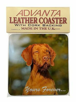 Wirehair Vizsa 'Yours Forever' Single Leather Photo Coaster Animal B, AD-HWV1ySC