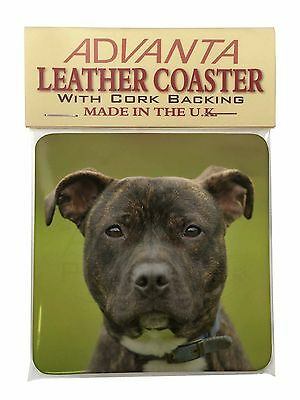 Staffordshire Bull Terrier Single Leather Photo Coaster Animal Breed, AD-SBT14SC