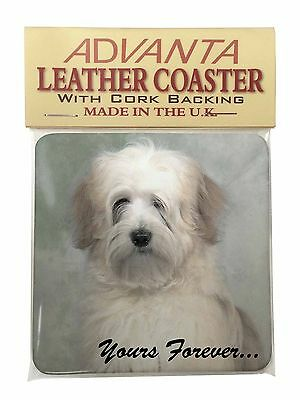 Tibetan Terrier 'Yours Forever' Single Leather Photo Coaster Animal B, AD-TT1ySC