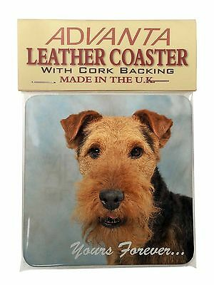 Welsh Terrier 'Yours Forever' Single Leather Photo Coaster Animal Bre, AD-WT1ySC