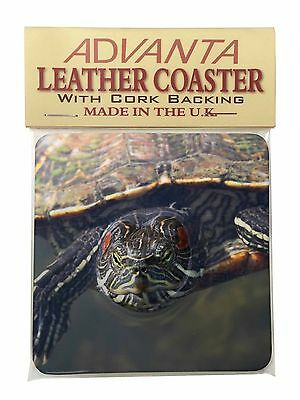 Terrapin Intrigued by Camera Single Leather Photo Coaster Animal Breed , AR-T1SC