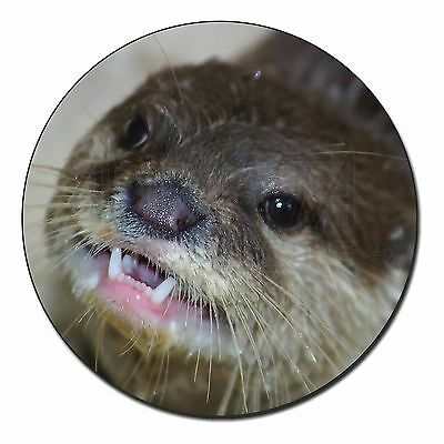 Cheeky Otters Face Fridge Magnet Stocking Filler Christmas Gift, AO-1FM