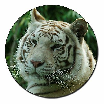 Leopard Fridge Magnet Stocking Filler Christmas Gift AT-38FM