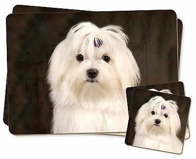 Maltese Dog Twin 2x Placemats+2x Coasters Set in Gift Box, AD-M1PC