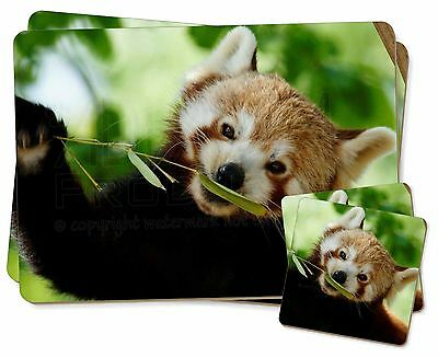 Cute Red Panda Twin 2x Placemats+2x Coasters Set in Gift Box, ARP-2PC