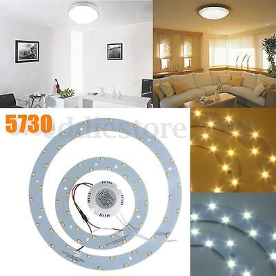Super Bright 5730 SMD 8-33W LED Panel Circle Annular Ceiling Light Fixtures Lamp