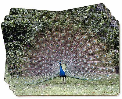 Colourful Peacock Picture Placemats in Gift Box, AB-PE76P