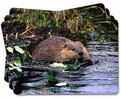 River Beaver Picture Placemats in Gift Box, ABV-1P