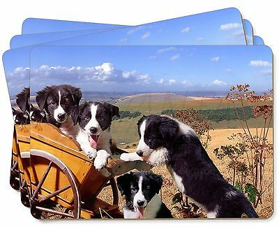 Border Collie Picture Placemats in Gift Box, AD-BC19P