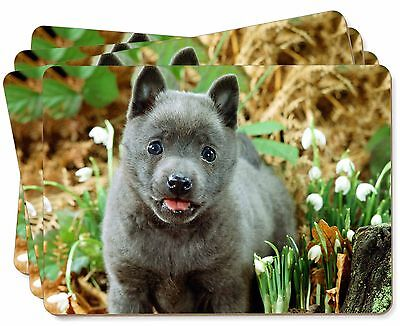 Blue Schipperke Dog Picture Placemats in Gift Box, AD-BS1P