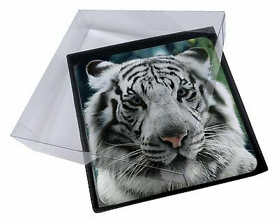 AT-13C 4x Siberian White Tiger Picture Table Coasters Set in Gift Box