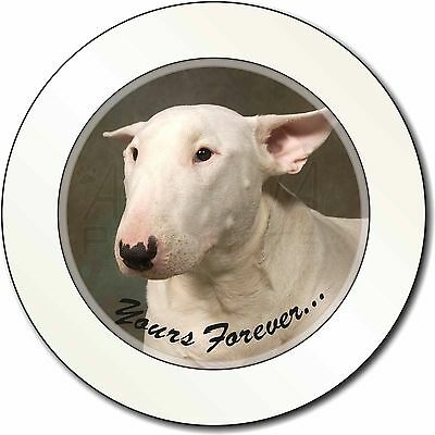 """Bull Terrier Dog """"Yours Forever"""" Car/Van Permit Holder/Tax Disc Gift, AD-BUT1yT"""