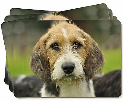 Welsh Fox Terrier Dog Picture Placemats in Gift Box, AD-FT4P