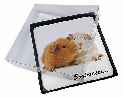 4x Soulmates' Guinea Pigs Picture Table Coasters Set in Gift Box, SOUL-85C