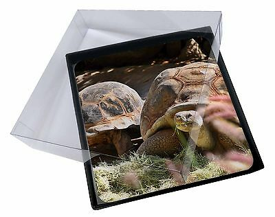 4x Giant Tortoise Picture Table Coasters Set in Gift Box, AR-T15C