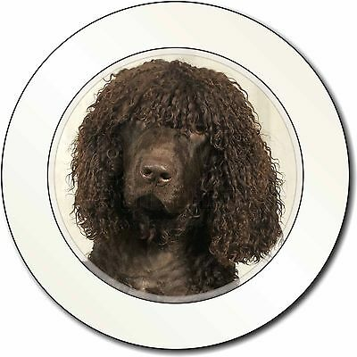 Irish Water Spaniel Dog Car/Van Permit Holder/Tax Disc Gift, AD-IWST