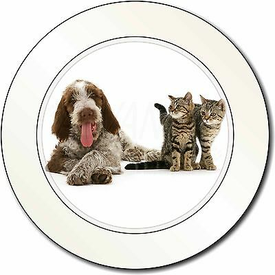 Italian Spinone Dog and Kittens Car/Van Permit Holder/Tax Disc Gift, AD-SP1T