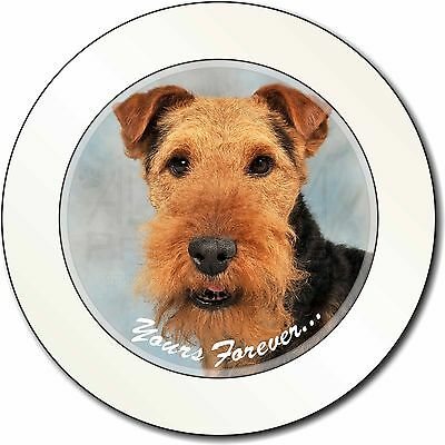 Welsh Terrier 'Yours Forever' Car/Van Permit Holder/Tax Disc Gift, AD-WT1yT