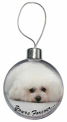 Bichon Frise Dog 'Yours Forever' Christmas Tree Bauble Decoration Gift, AD-BF3CB