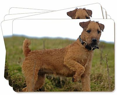 Lakeland Terrier Dog Picture Placemats in Gift Box, AD-LT1P