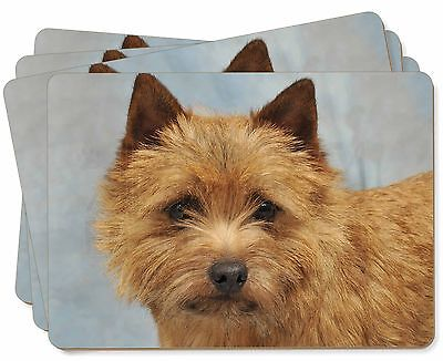 Norfolk-Norwich Terrier Dog Picture Placemats in Gift Box, AD-NT2P