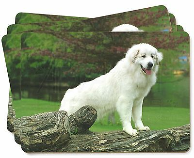 Pyrenean Mountain Dog Picture Placemats in Gift Box, AD-PM1P