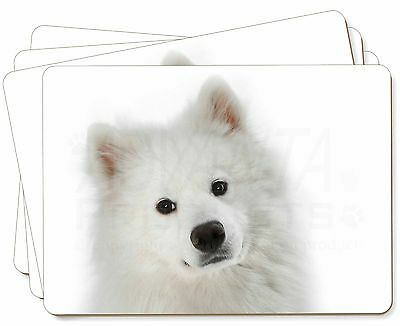 Samoyed Dog Picture Placemats in Gift Box, AD-SO73P
