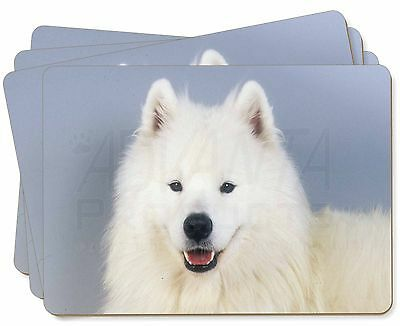 Samoyed Dog Picture Placemats in Gift Box, AD-SO76P