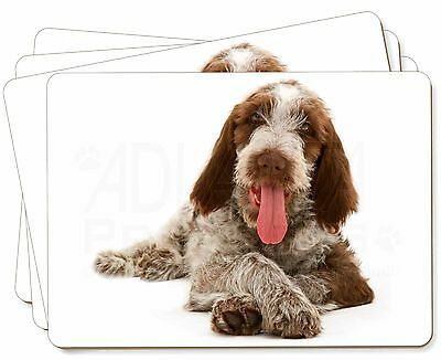 Italian Spinone Dog Picture Placemats in Gift Box, AD-SP2P