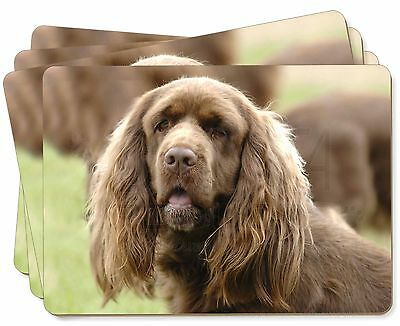 Sussex Spaniel Dog Picture Placemats in Gift Box, AD-SUS1P