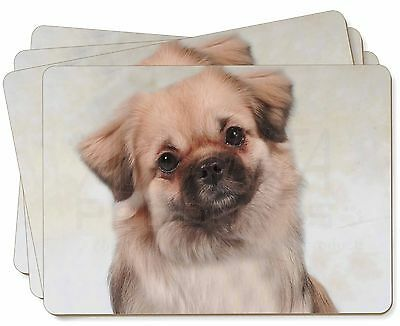 Tibetan Spaniel Dog Picture Placemats in Gift Box, AD-TS1P