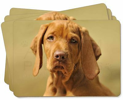 Hungarian Vizsla Dog Picture Placemats in Gift Box, AD-V2P